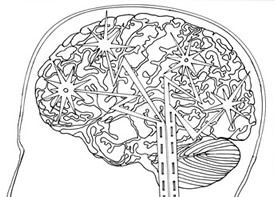 Brain Plasticity - Chronic Pain Visualisation Picture Drawing Template